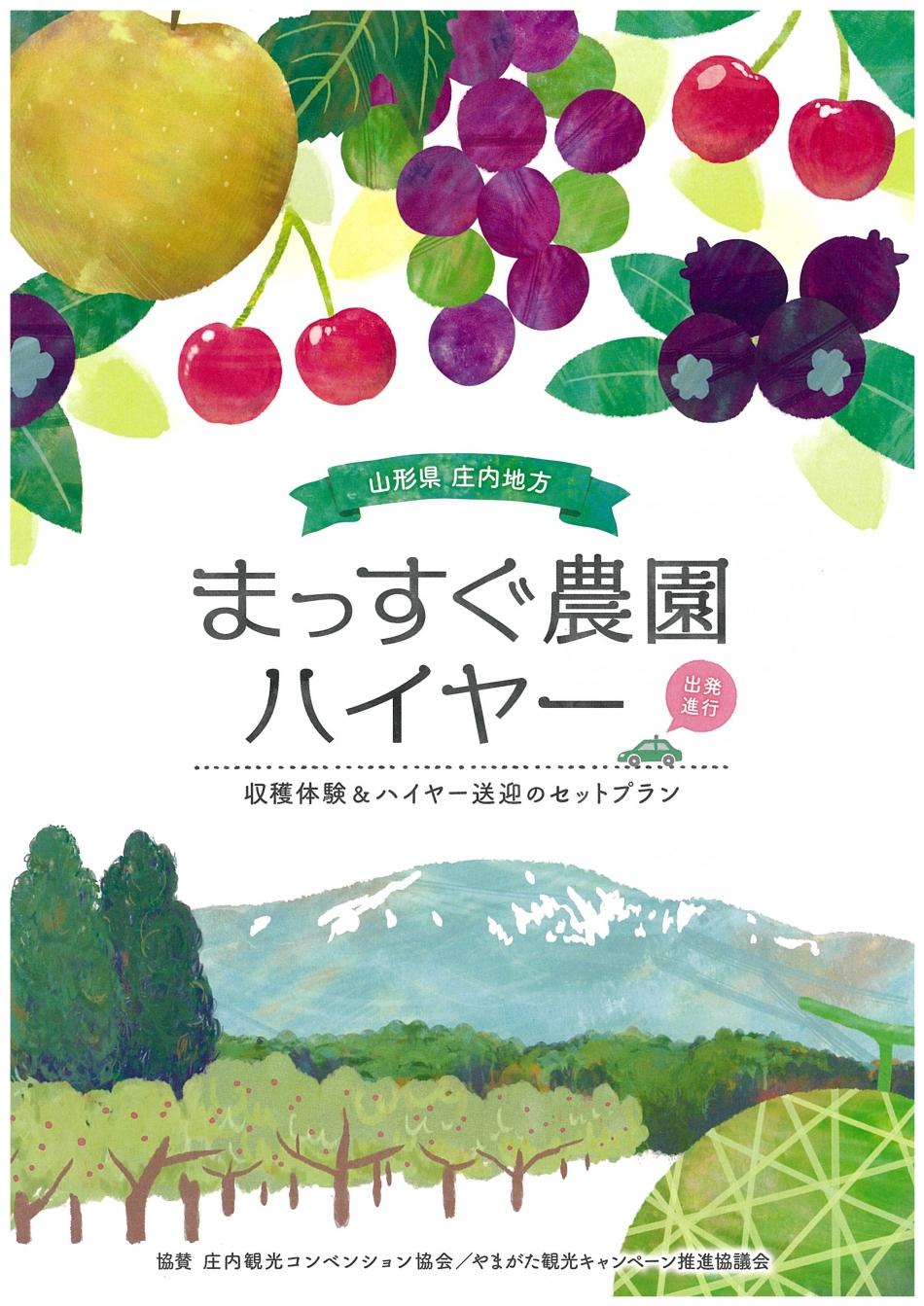 まっすぐフルーツ収穫体験!まっすぐ農園ハイヤー【6月8日(土)~10月14日(月)】