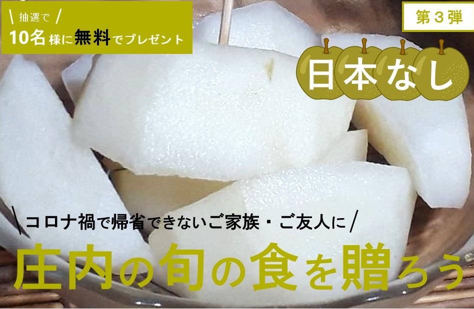 庄内の旬の食を贈ろうキャンペーン(第3弾 日本なし)
