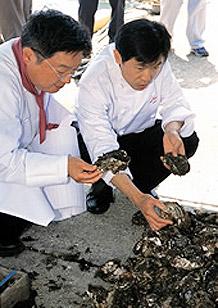 「食の都庄内」親善大使       古庄シェフ(左)と奥田シェフ(右)